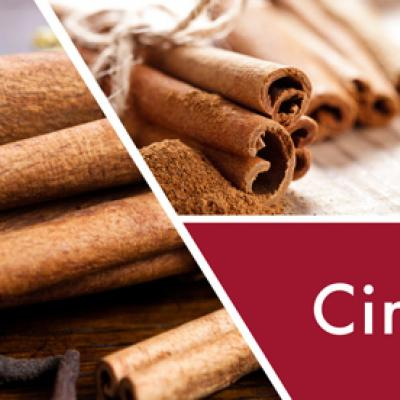 vonná svíčka GOOSE CREEK Cinnamon Spice 680g