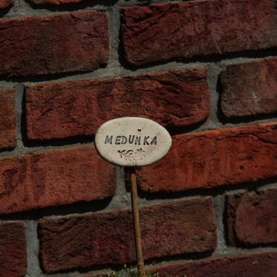 mrazuvzdorná zahradní keramika Zuzana Morkusova  morkusovic