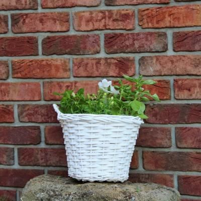 proutěný květní/ košík s uchy bílý