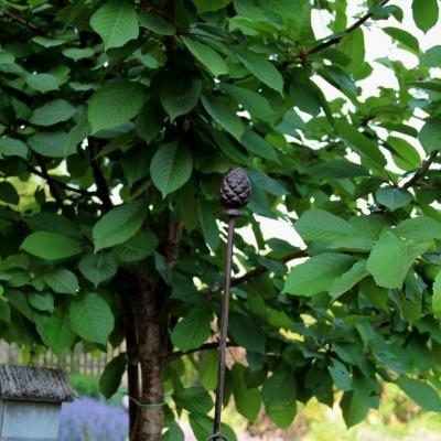 podpora k rostinám - piniova šiška